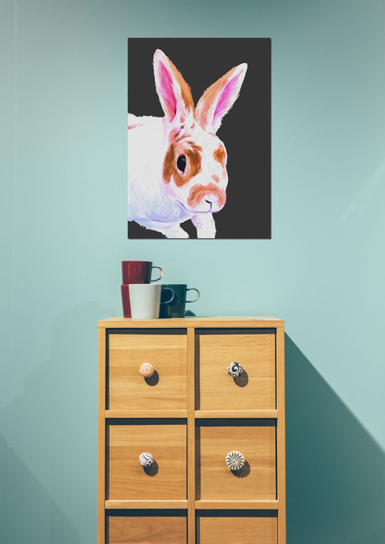 white and brown bunny on a black background Displate poster print