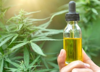 CBD Oil and Hemp Oil- Same or Not